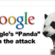 Google panda updates-Are you suffering