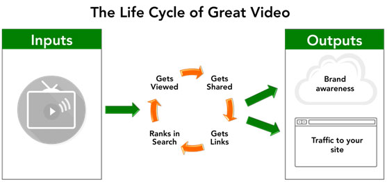 video life cycle