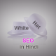 White Hat SEO and Techniques in Hindi